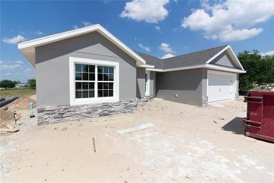 Eustis Single Family Home For Sale: 36824 Alaqua Court