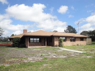 Lake County, Sumter County Single Family Home For Sale: 4401 Griffin View Drive