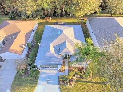 Leesburg Single Family Home For Sale: 436 Bentwood Drive