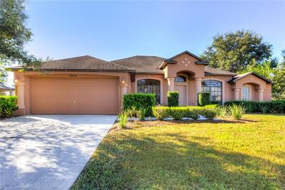 Eustis Single Family Home For Sale: 24652 Calusa Boulevard