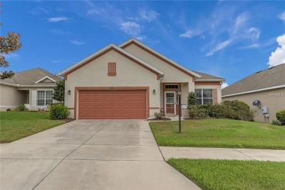 Lake County, Marion County Single Family Home For Sale: 3608 Mount Hope Loop