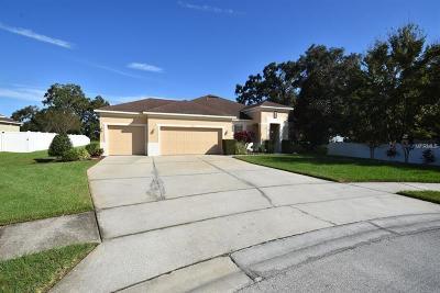 Winter Garden Single Family Home For Sale: 453 Black Springs Lane