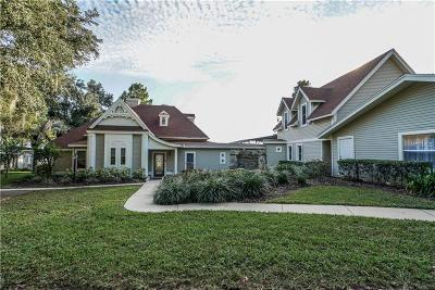 Mount Dora Single Family Home For Sale: 1212 Oakland Lane