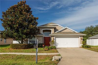 Mount Dora Single Family Home For Sale: 2105 Briarcliff Circle