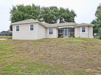 Eustis Single Family Home For Sale: 3031 Indian Trail