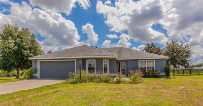 Wildwood Single Family Home For Sale: 4585 County Road 121d