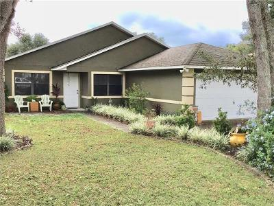 Lady Lake Single Family Home For Sale