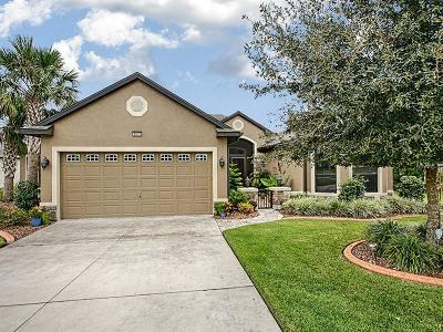 Mount Dora Single Family Home For Sale: 8072 Bridgeport Bay Circle