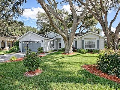 Leesburg Single Family Home For Sale: 3745 Plantation Boulevard