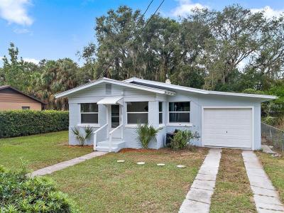 Mount Dora Single Family Home For Sale: 1329 Clayton St