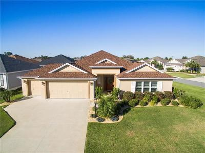 The Villages Single Family Home For Sale: 703 Vibrant Lane