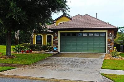 Mount Dora Single Family Home For Sale: 8997 Bridgeport Bay Circle