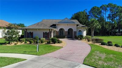 Lady Lake Single Family Home For Sale: 38610 Lakeview Walk