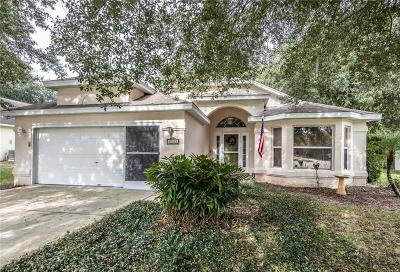 Leesburg Single Family Home For Sale: 10327 Patrick Drive