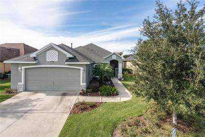 Mount Dora Single Family Home For Sale: 7873 Crosswinds Way