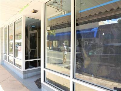 Commercial For Sale: 304 W Main Street