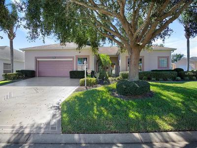 Leesburg Single Family Home For Sale: 5036 Sawgrass Lake Circle