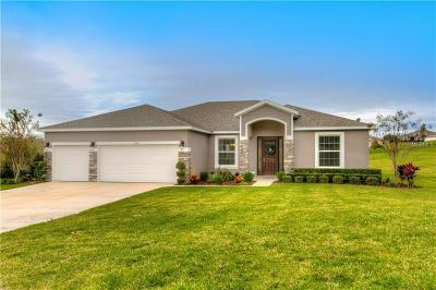 Leesburg Single Family Home For Sale: 31311 Sunny Meadow Court