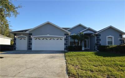 Clermont Single Family Home For Sale: 9635 Spring Lake Drive
