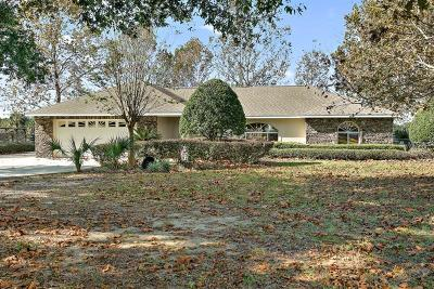 Umatilla Single Family Home For Sale: 19654 Twin Ponds Road