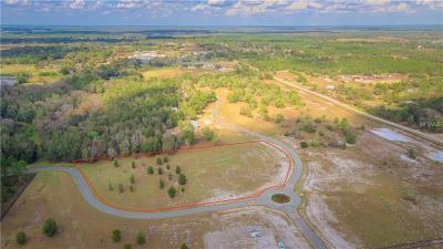 Eustis Residential Lots & Land For Sale: Tbd Shady Branch Way (Lot 13)
