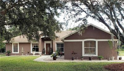 Clermont Single Family Home For Sale: 11308 Sooner Drive