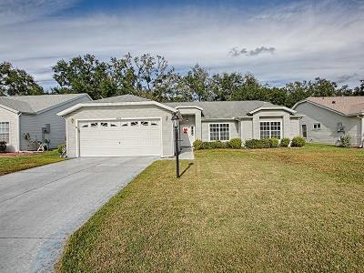 Leesburg Single Family Home For Sale: 4919 Tara View Road