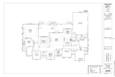 Lady Lake Single Family Home For Sale: 39700 Darlington Avenue