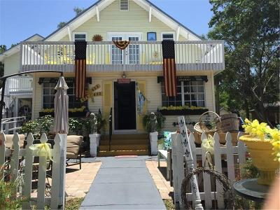 Mount Dora Single Family Home For Sale: 822 N Donnelly Street