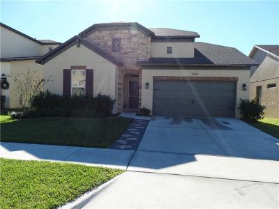 Minneola Single Family Home For Sale: 3066 Princewood Drive