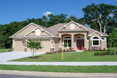 Mount Dora FL Single Family Home For Sale: $454,600