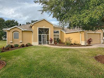 Leesburg Single Family Home For Sale: 27641 Stoney Brook Drive