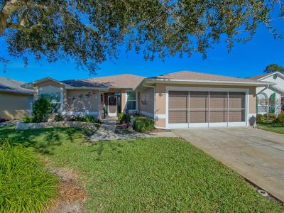 Leesburg Single Family Home For Sale: 523 Grand Vista Trail