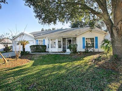 Leesburg Single Family Home For Sale: 4902 Tara View Road