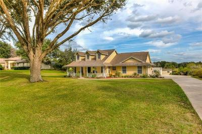 Mount Dora Single Family Home For Sale: 32802 Scenic Hills Drive