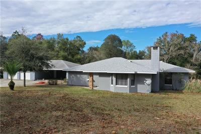 Eustis Single Family Home For Sale: 24345 Stillbrook Drive