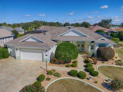 Lake County, Sumter County Single Family Home For Sale: 961 Brantley Street