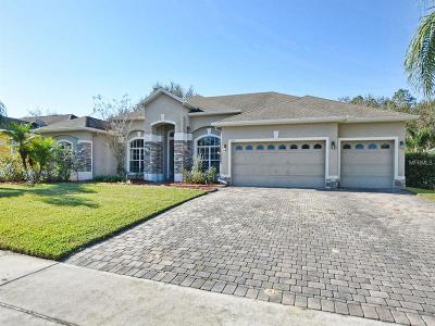 Apopka Single Family Home For Sale: 3249 Rolling Hills Lane