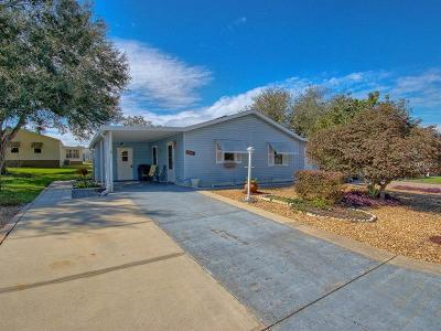 The Villages Single Family Home For Sale: 1216 E Schwartz Boulevard