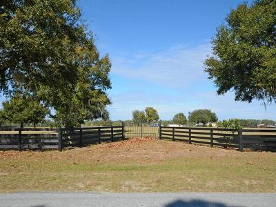 Tavares Residential Lots & Land For Sale: 28901 Shirley Shores Road