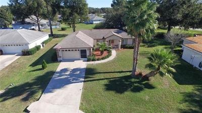 Lake County, Marion County Single Family Home For Sale: 10235 SW 61st Terrace Road