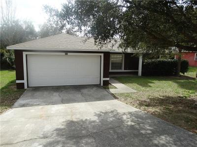 Minneola Single Family Home For Sale: 653 Park Valley Circle