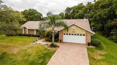 Mount Dora Single Family Home For Sale: 4653 Sloewood Court