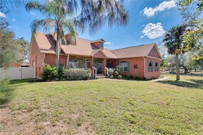 Kissimmee Single Family Home For Sale: 1031 Kings Highway