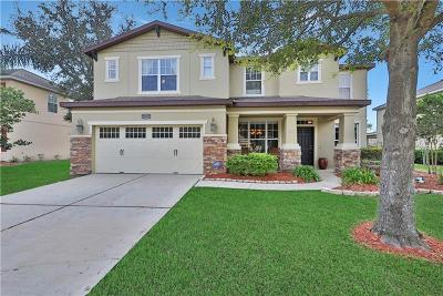 Mount Dora Single Family Home For Sale: 30147 Jutland Court