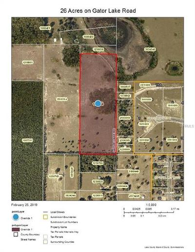 Lady Lake FL Residential Lots & Land For Sale: $200,000