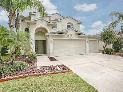 Mount Dora Single Family Home For Sale: 5627 Ansley Way