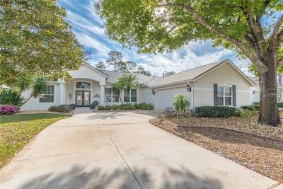Mount Dora Single Family Home For Sale: 9037 Laurel Ridge Drive