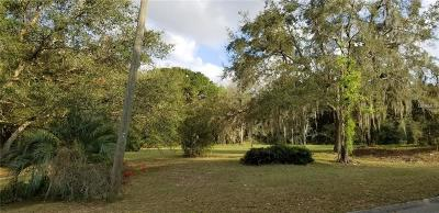 Clermont Residential Lots & Land For Sale: Scott Lot 506 Street