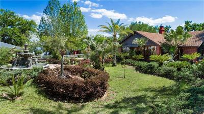 Montverde Single Family Home For Sale: 17605 County Road 455